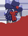 Dallas Chicken